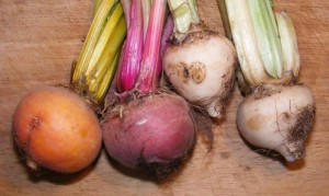 Image from Beet Man