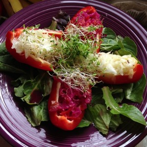 Sauerkraut Stuffed Peppers