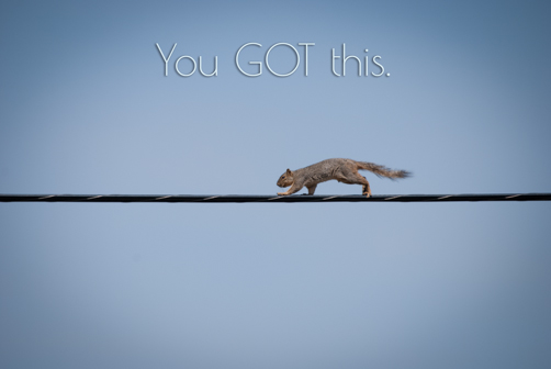 You got this Squirrel | Feed Your Skull