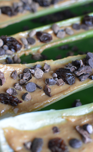 Party Ants on a Log | Feed Your Skull