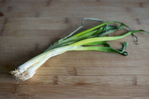 How to Bring Your Green Onions Back from the Dead