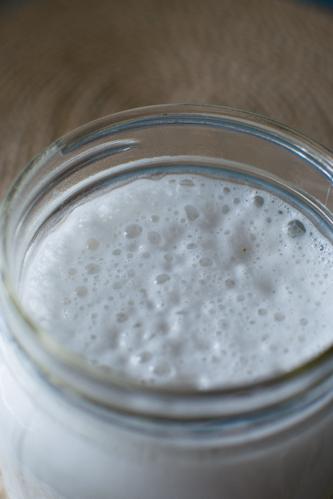 How to Make Homemade Coconut Milk + Dark Chocolate Hot Cocoa Rec
