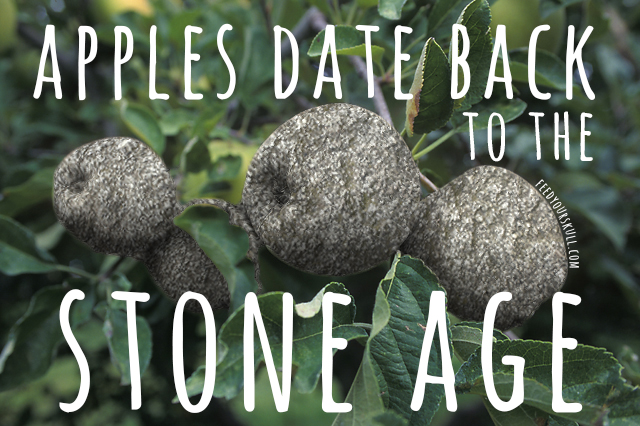 stoneage_apples